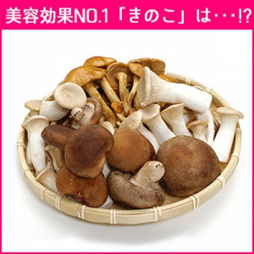 栄養と美容効果№1『きのこ』はコレ!
