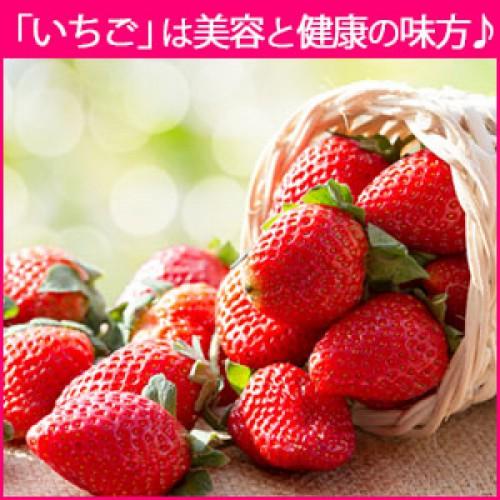 美味しい春フルーツの『いちご』はビタミンCが沢山で美容と健康の味方!
