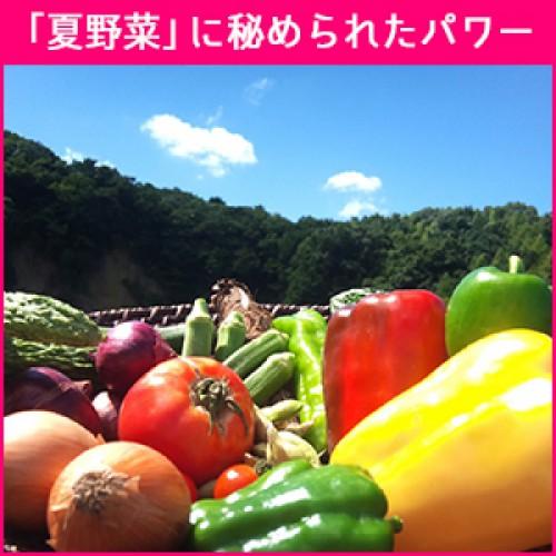 「夏野菜」旬の野菜に秘められたパワーとは?