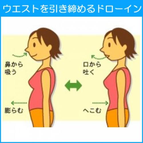 今年の夏はお腹見せ!夏までにポッコリお腹解消の方法を解説!
