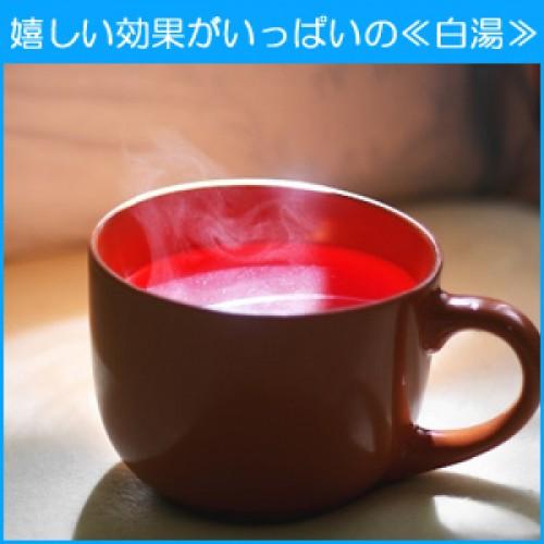 美人の常識!?朝一杯の白湯の驚くべき効能とは?体質改善オススメ